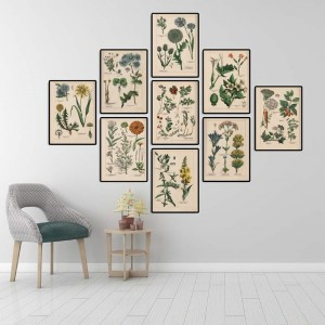 Botanical Collection VintageCanvas Painting Herbs 1898s Russian Posters and Prints Wall Art Pictures for Living Room Home Decor