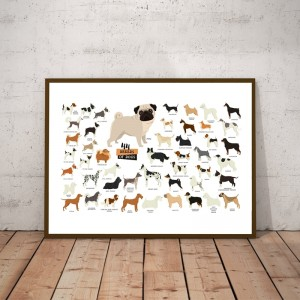 Breeds of Dogs Collection Illustration Poster Wall Art Canvas Painting Picture Dog Lover Gift idea Nordic Posters Home Decor