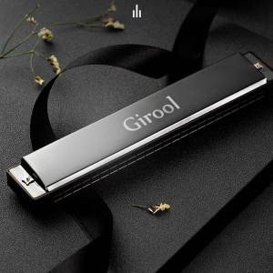 Girool Harmonica for children and adults beginner's instrument stainless steel two-tone organ with storage bag